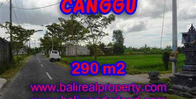 Stunning Land for sale in Bali, Paddy view in Canggu Bali – TJCG141
