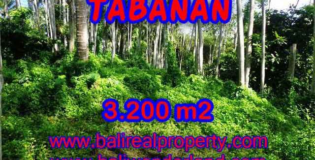 Stunning Land for sale in Bali, Mountain and ricefields and river view in Tabanan Bali – TJTB120