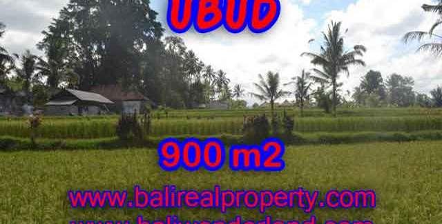 Land in Ubud Bali for sale, nice view in Ubud Tegalalang Bali – TJUB412
