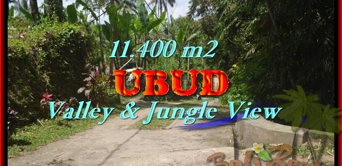 Land for sale in Bali, exotic view in Ubud Payangan Bali – TJUB431