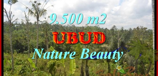 Land for sale in Bali, exceptional view in Ubud Payangan – TJUB430