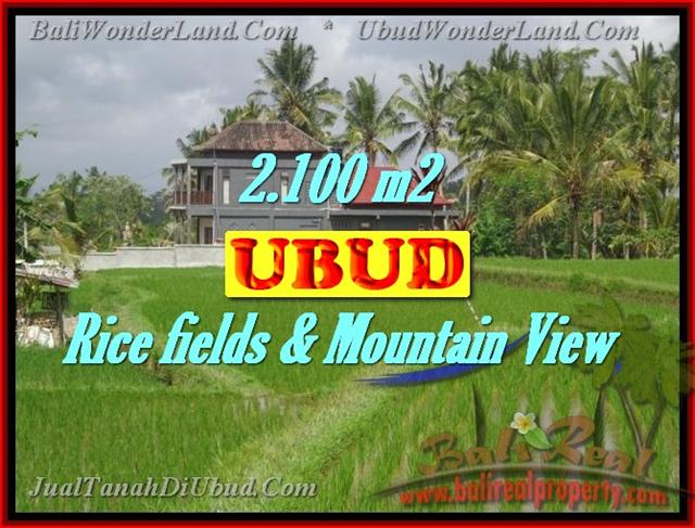 Land in Ubud for sale, Outstanding view in Ubud Tegalalang Bali – TJUB423