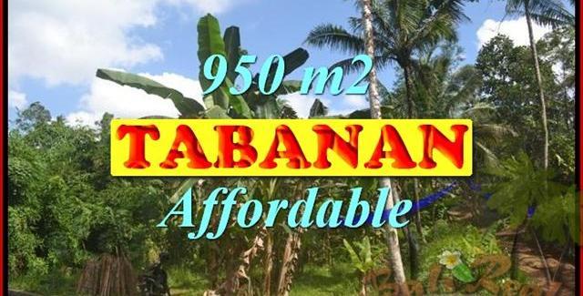 Land for sale in Tabanan Bali, Unbelievable view in Tabanan Kota ( City ) – TJTB146
