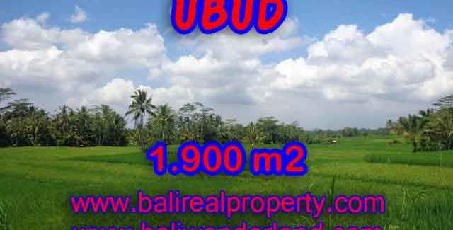 Exceptional Property in Bali, land for sale in Ubud Bali – TJUB403