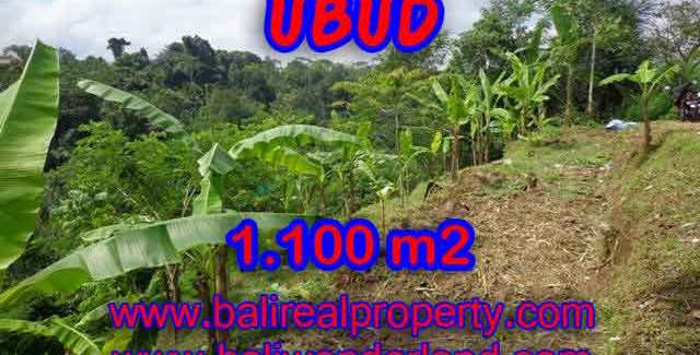 Land in Ubud Bali for sale, Exotic view in Ubud Tegalalang – TJUB407