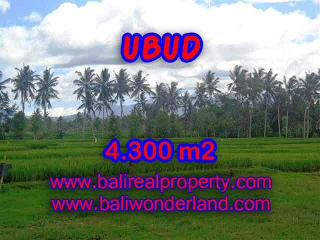 Land for sale in Bali, exceptional view in Ubud Center – TJUB370