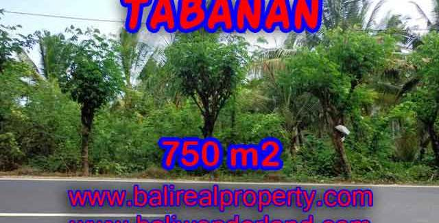 Property in Bali for sale, Fantastic view in Tabanan selemadeg – TJTB138