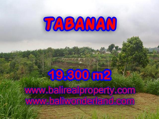 Land for sale in Tabanan Bali, Unbelievable view in Bedugul Tabanan – TJTB086