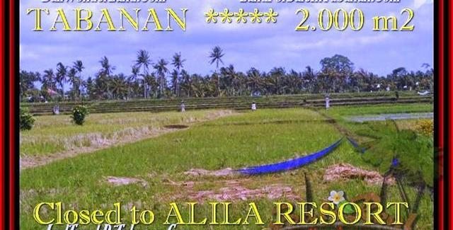 Beautiful PROPERTY LAND FOR SALE IN TABANAN TJTB187