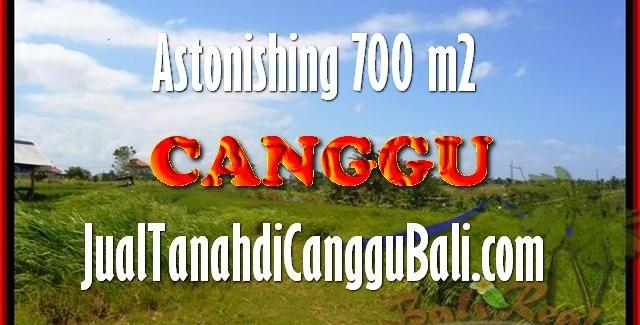 FOR SALE Exotic PROPERTY LAND IN Canggu Kayu tulang TJCG155