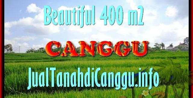 Affordable PROPERTY LAND SALE IN Canggu Pererenan TJCG156