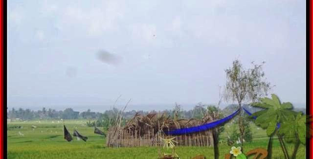 Beautiful PROPERTY 1.650 m2 LAND SALE IN CANGGU TJCG158