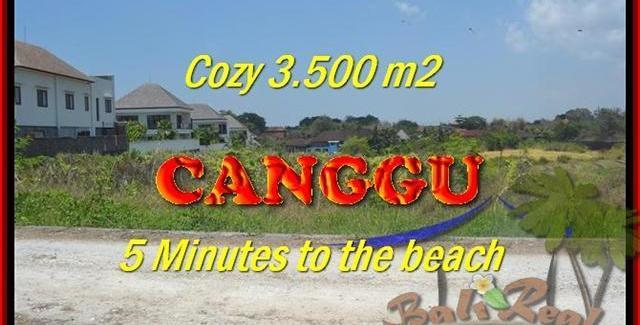 Affordable Canggu Kayutulang BALI 3.500 m2 LAND FOR SALE TJCG165