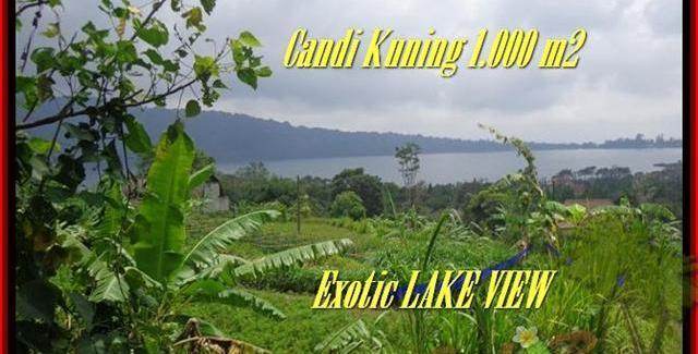 FOR SALE LAND IN Tabanan Bedugul TJTB179