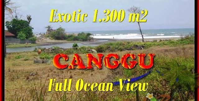 Magnificent PROPERTY CANGGU 1.300 m2 LAND FOR SALE TJCG162