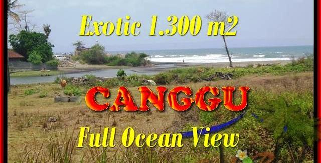 Magnificent PROPERTY CANGGU 1.300 m2 LAND FOR SALE TJCG162