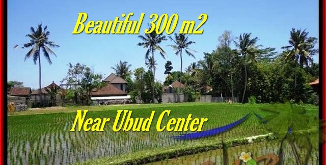 Magnificent LAND FOR SALE IN Sentral Ubud BALI TJUB436