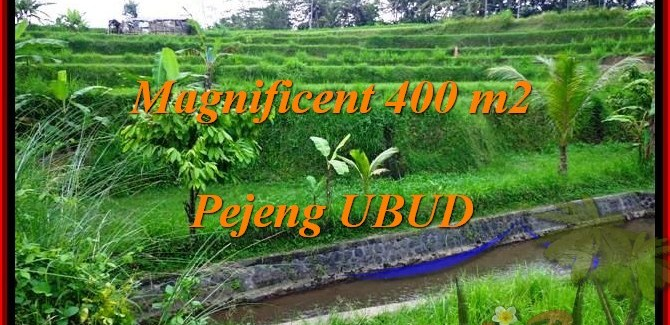 FOR SALE Exotic 400 m2 LAND IN UBUD TJUB483
