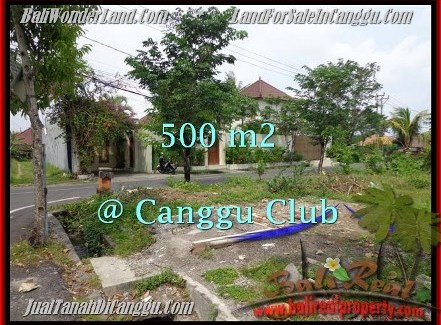 FOR SALE Exotic 500 m2 LAND IN Canggu Brawa BALI TJCG176