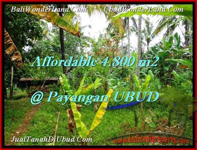 FOR SALE Beautiful LAND IN Ubud Payangan BALI TJUB486
