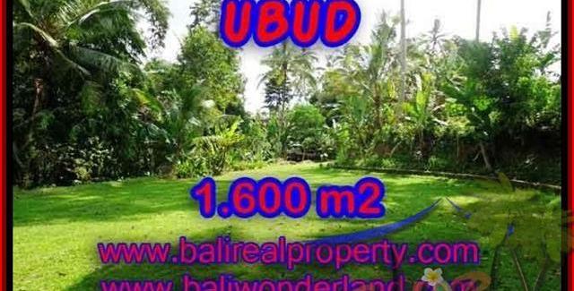 Beautiful PROPERTY 1,600 m2 LAND FOR SALE IN Sentral Ubud TJUB416