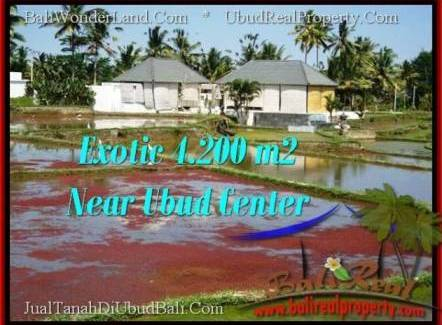 Exotic 4,200 m2 LAND FOR SALE IN UBUD BALI TJUB502