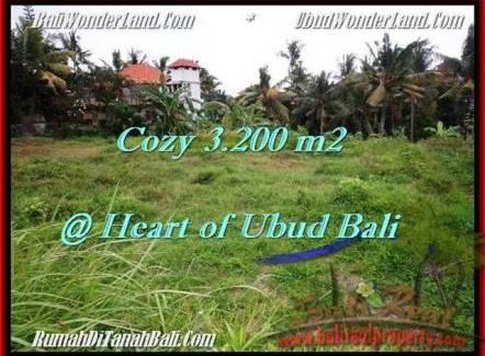 Magnificent LAND SALE IN Sentral Ubud BALI TJUB510