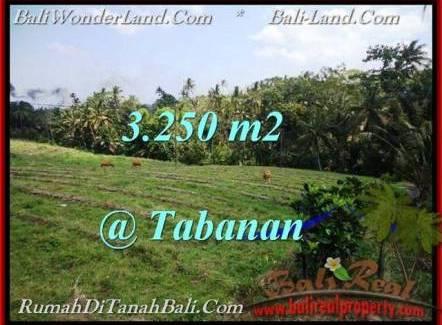 Magnificent LAND SALE IN Tabanan Selemadeg BALI TJTB208