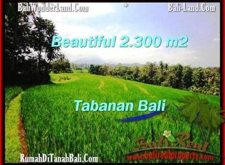 FOR SALE Beautiful LAND IN Tabanan Selemadeg BALI TJTB209