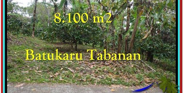 Magnificent PROPERTY 8.100 m2 LAND FOR SALE IN Tabanan Penebel TJTB212