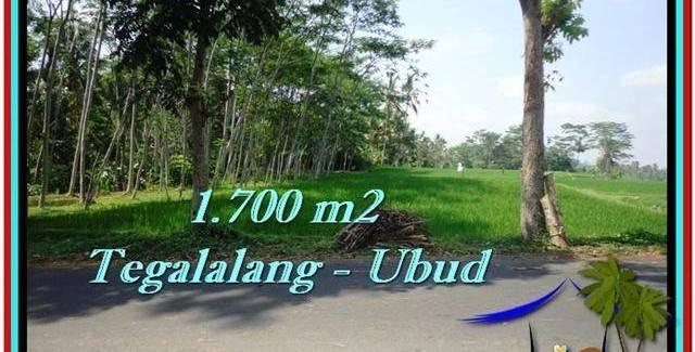 Beautiful PROPERTY LAND SALE IN UBUD TJUB518