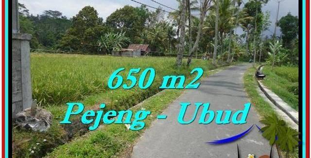 Beautiful 650 m2 LAND SALE IN UBUD BALI TJUB522