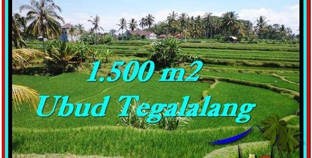 Affordable LAND SALE IN Ubud Tegalalang BALI TJUB528