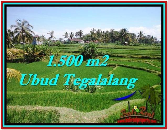 Affordable LAND SALE IN Ubud Tegalalang BALI TJUB528
