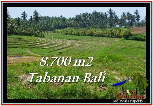 FOR SALE 8,700 m2 LAND IN TABANAN TJTB233