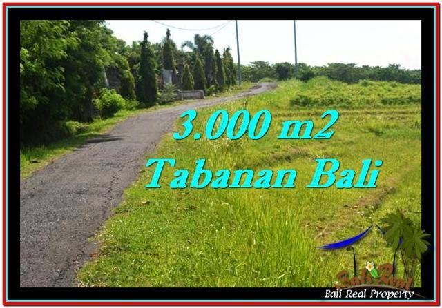 Beautiful PROPERTY 3,000 m2 LAND IN Tabanan Selemadeg FOR SALE TJTB246