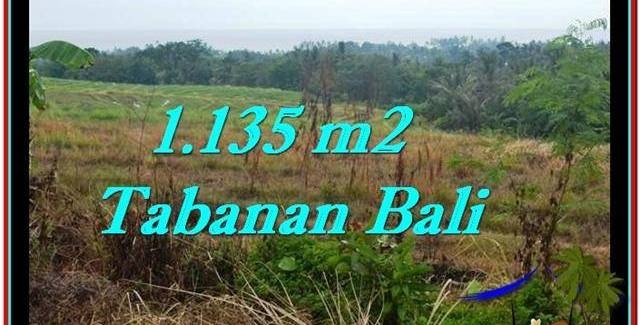 Beautiful PROPERTY LAND SALE IN TABANAN TJTB253