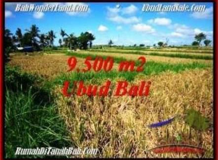 Exotic PROPERTY LAND IN UBUD BALI FOR SALE TJUB548