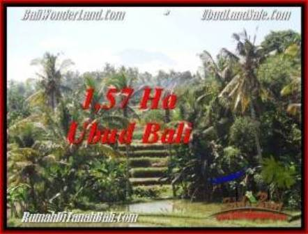 FOR SALE Magnificent PROPERTY LAND IN UBUD TJUB549