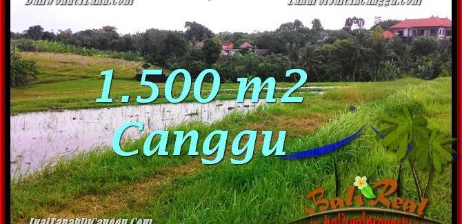 Beautiful 1,500 m2 LAND SALE IN CANGGU BALI TJCG198