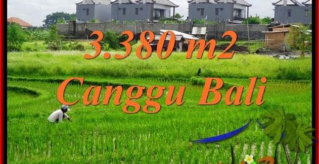FOR SALE LAND IN Canggu Echo beach TJCG199