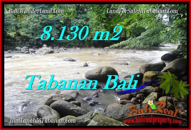 FOR SALE 8,130 m2 LAND IN TABANAN TJTB285
