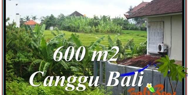 Canggu Brawa LAND FOR SALE TJCG206