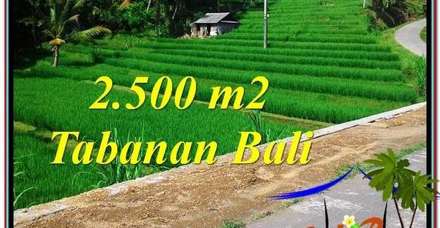 Exotic 2,500 m2 LAND FOR SALE IN TABANAN BALI TJTB305