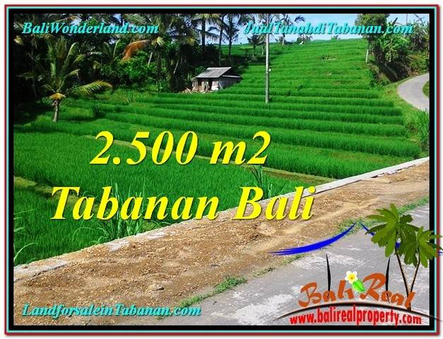 Exotic 2,500 m2 LAND FOR SALE IN TABANAN BALI TJTB305