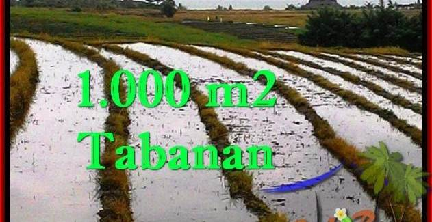 Beautiful TABANAN BALI 1,000 m2 LAND FOR SALE TJTB261