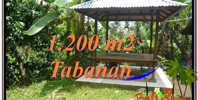FOR SALE Affordable 1,200 m2 LAND IN TABANAN TJTB294