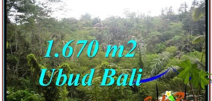 Affordable PROPERTY 1,670 m2 LAND FOR SALE IN Ubud Payangan TJUB569