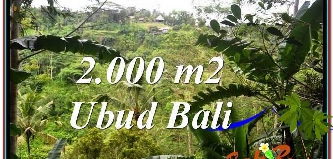 Magnificent PROPERTY Ubud Payangan 2,000 m2 LAND FOR SALE TJUB573
