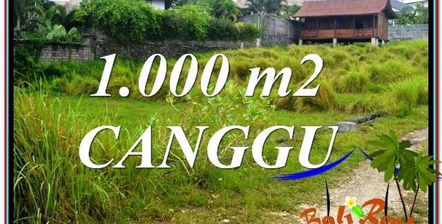 Affordable Canggu Pererenan 1,000 m2 LAND FOR SALE TJCG214